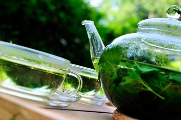Чай из мяты или мелиссы