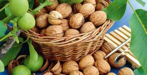 Грецкие орехи в корзине