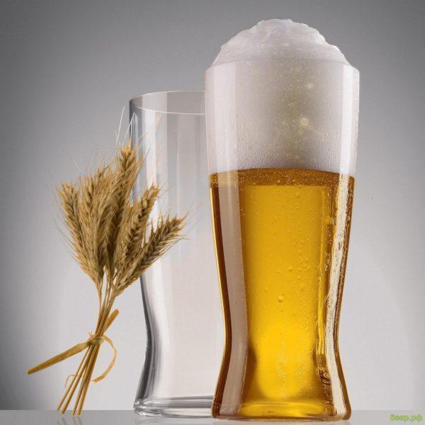 Натуральное безалкогольное пиво