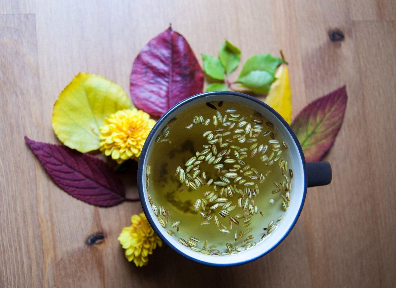 Чай с фенхелем для увеличения лактации: свойства, состав и инструкции по применению