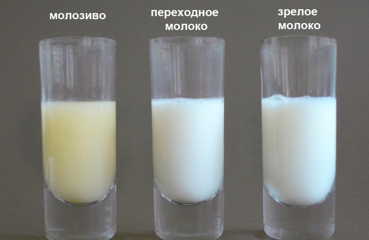 КАК СДЕЛАТЬ так чтоб молока было много, да и вообще чтоб оно