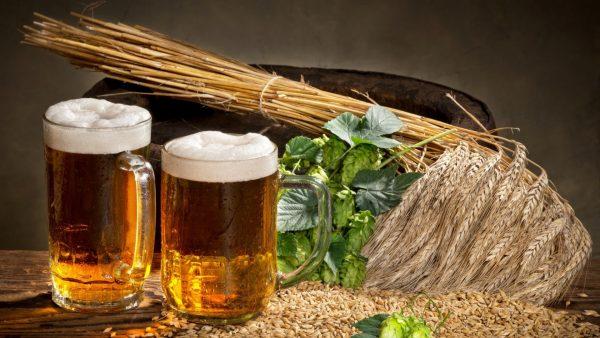 Ингредиенты пива