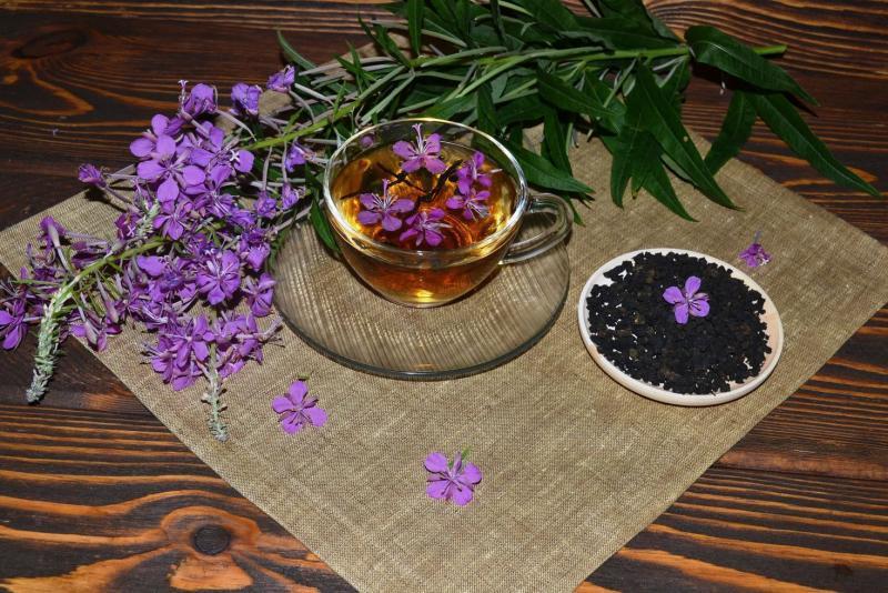 Иван-чай кормящей маме: старинный напиток на страже лактации