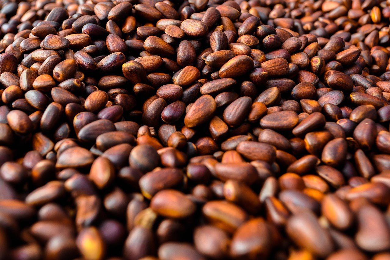 Кедровые орехи при грудном вскармливании: польза и вред