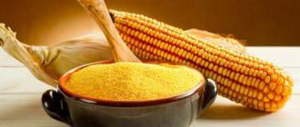 Кукуруза в рационе кормящей мамы.