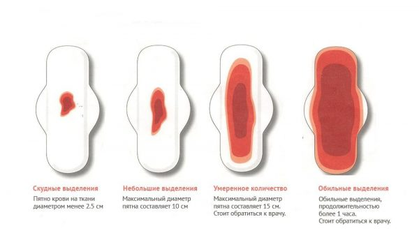 объем крови при месячных