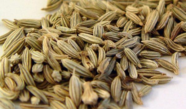 Семена фенхеля сушёные