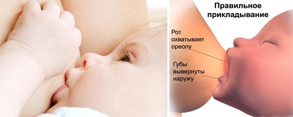 Правильное прикладывание младенца к соску