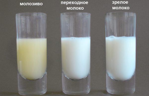 Разновидности грудного молока