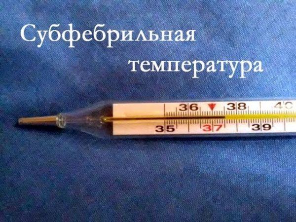 Термометр показывает температуру 37,5 градусов