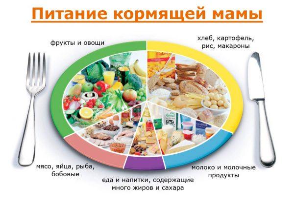 Дневной рацион кормящей мамы