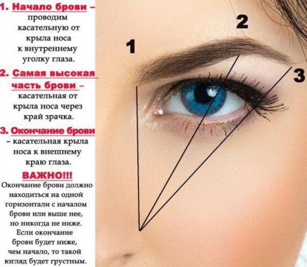 Схема правильной формы бровей
