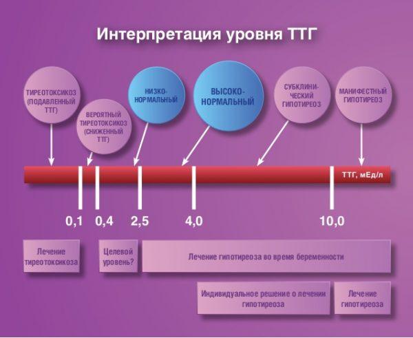 Норма и отклонение уровня ТТГ во время беременности