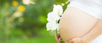 Долгожданная беременность может наступить вследствие лечения Дивигелем